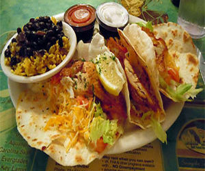 Seafood Restaurants Palm Harbor | Molly Goodheads